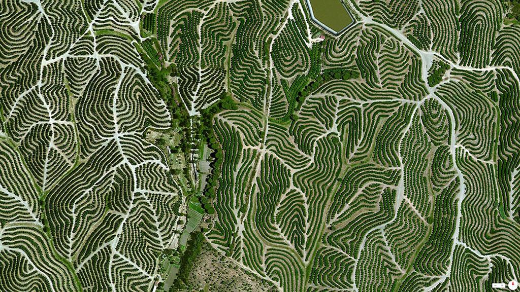 Breathtaking Satellite Photos (10)