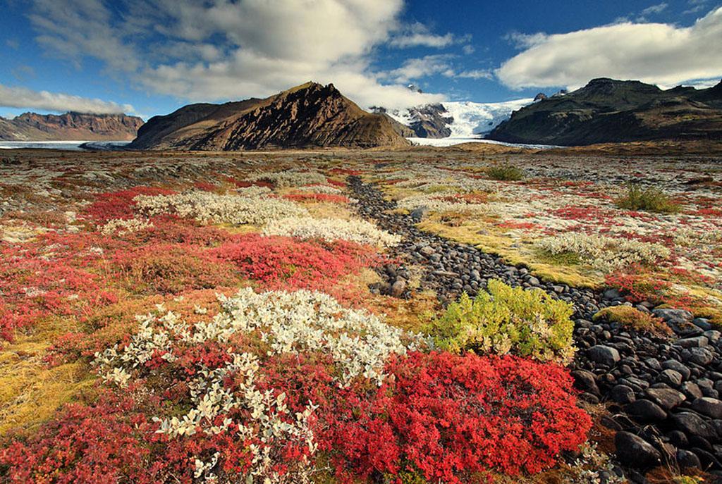 Iceland Landscape (12)